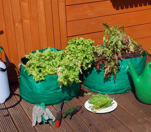 40L Salad Planter Grow Bags - 2 Pack