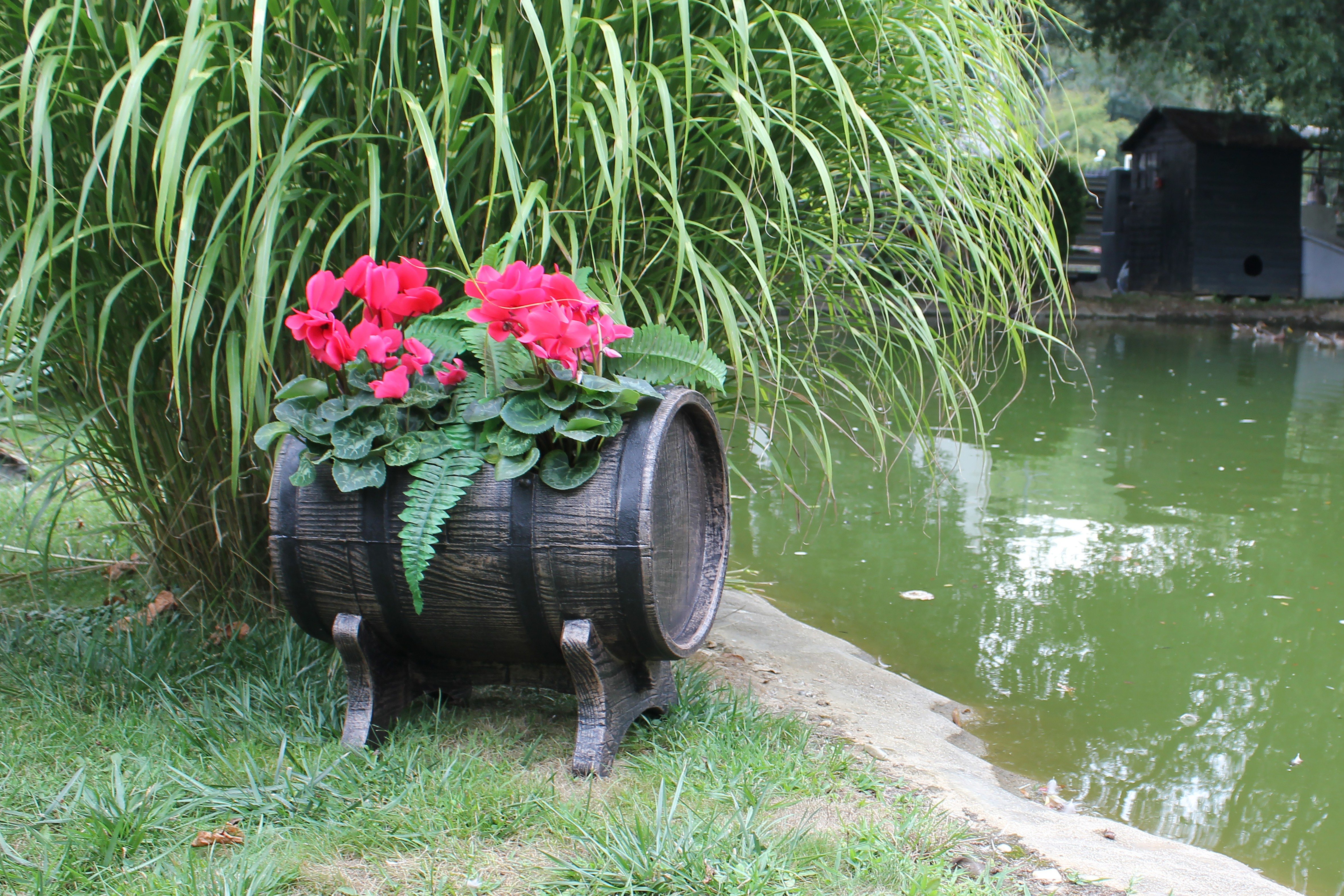 Roto Salsa Planter Barrel Effect - 50cm - Medium