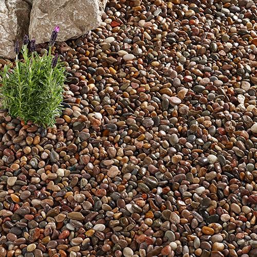 Kelkay Caledonian Pebbles Premium Decorative Aggregate, Bulk