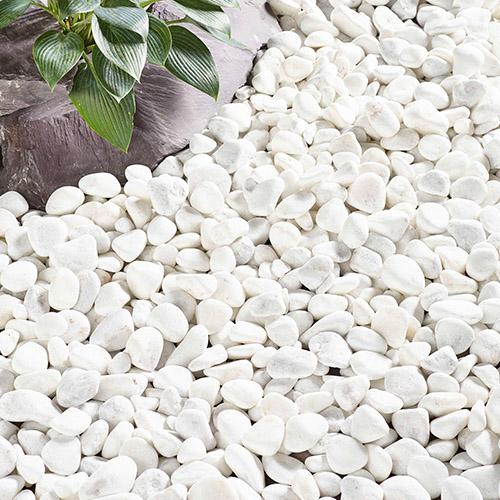 Kelkay Coral White Pebbles Decorative Aggregate, Bulk Bag