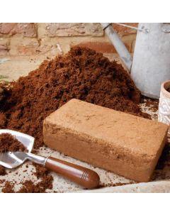 Coir Block for Wormery Bedding - 650 grams