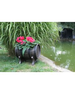 Roto Salsa Planter Barrel Effect - 50cm - Medium