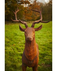 Cast Iron Majestic Stag Statue - Facing Straight