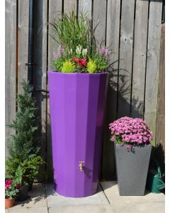 255L Metropolitan Water Butt with Planter in Purple