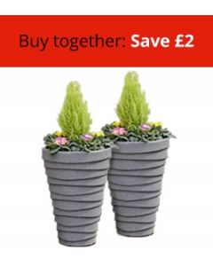Two Small Trojan Planters Bundle