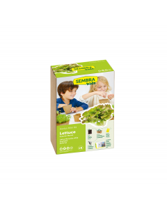 Summer Lettuce - Vegetable Garden Kit
