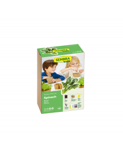 Spinach - Vegetable Garden Kit
